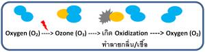 ozone produce